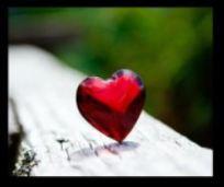 heart of the run